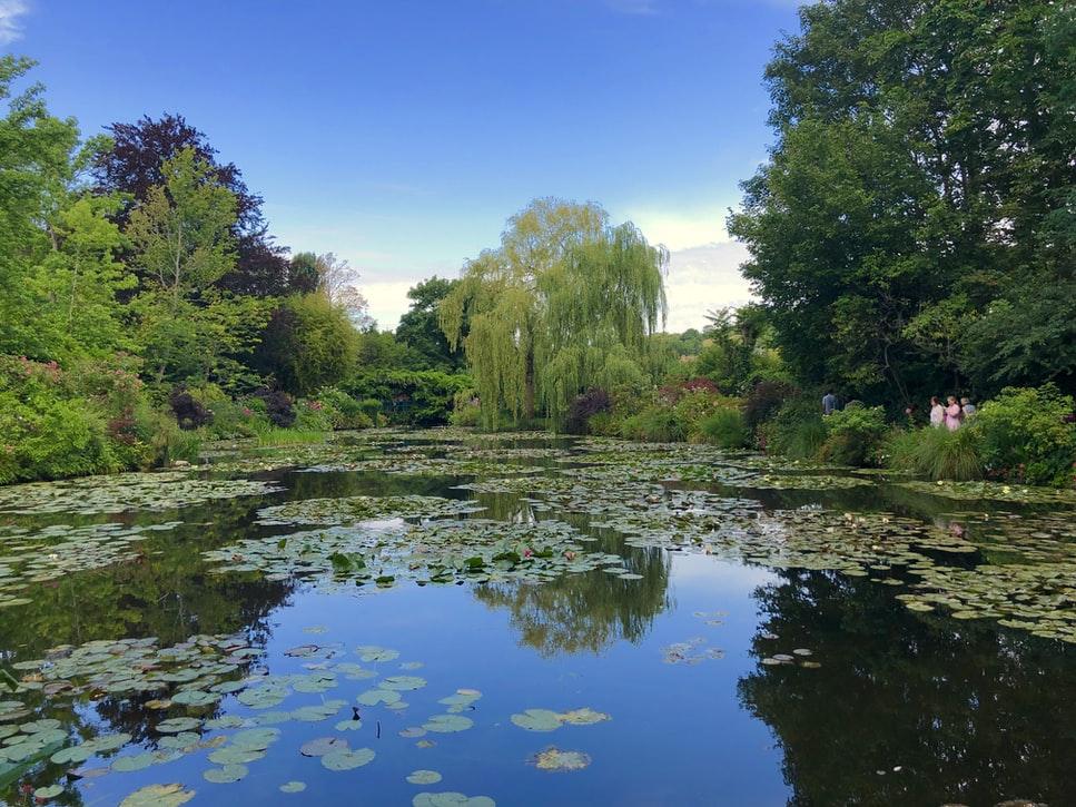 Une image contenant eau, extérieur, nature, rivière  Description générée automatiquement